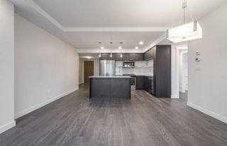 Photo 7: 1604 9720 106 Street NW in Edmonton: Zone 12 Condo for sale : MLS®# E4170003
