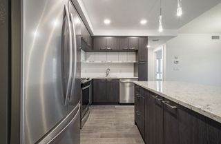 Photo 11: 1604 9720 106 Street NW in Edmonton: Zone 12 Condo for sale : MLS®# E4170003