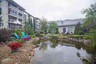 Photo 38: 314 261 YOUVILLE Drive E in Edmonton: Zone 29 Condo for sale : MLS®# E4202607