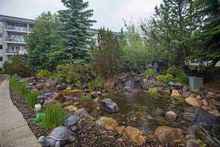 Photo 36: 314 261 YOUVILLE Drive E in Edmonton: Zone 29 Condo for sale : MLS®# E4202607