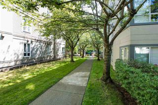 """Photo 22: 213 4990 MCGEER Street in Vancouver: Collingwood VE Condo for sale in """"CONNAUGHT"""" (Vancouver East)  : MLS®# R2480373"""
