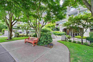 """Photo 33: 211 5888 DOVER Crescent in Richmond: Riverdale RI Condo for sale in """"Pelican Pointe"""" : MLS®# R2489063"""
