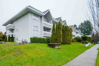 "Photo 24: 105 2055 SUFFOLK Avenue in Port Coquitlam: Glenwood PQ Condo for sale in ""Suffolk Manor"" : MLS®# R2526299"