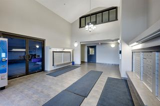 Photo 3: 427 111 EDWARDS Drive in Edmonton: Zone 53 Condo for sale : MLS®# E4169524