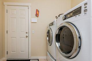 Photo 11: 7908 22 Avenue in Edmonton: Zone 53 House for sale : MLS®# E4170201