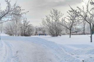 Photo 41: 4904 187 Street in Edmonton: Zone 20 House for sale : MLS®# E4185505