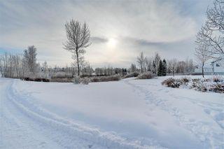 Photo 42: 4904 187 Street in Edmonton: Zone 20 House for sale : MLS®# E4185505