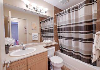 Photo 29: 4904 187 Street in Edmonton: Zone 20 House for sale : MLS®# E4185505