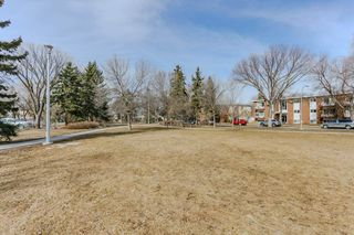 Photo 39: 301 7725 108 Street in Edmonton: Zone 15 Condo for sale : MLS®# E4181203