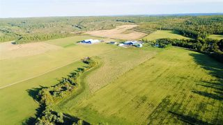 Photo 29: 273 Gospel Road in Brow Of The Mountain: 404-Kings County Farm for sale (Annapolis Valley)  : MLS®# 202019844