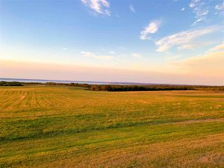 Photo 3: 273 Gospel Road in Brow Of The Mountain: 404-Kings County Farm for sale (Annapolis Valley)  : MLS®# 202019844