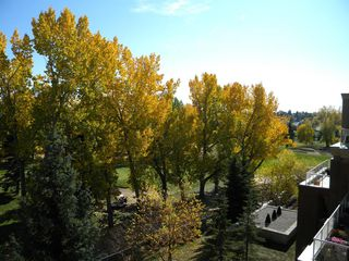 Photo 37: 2406 24 HEMLOCK Crescent SW in Calgary: Spruce Cliff Apartment for sale : MLS®# A1037328