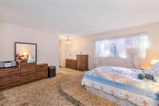 Photo 19: 1158 EAGLERIDGE Drive in Coquitlam: Eagle Ridge CQ House for sale : MLS®# R2506833