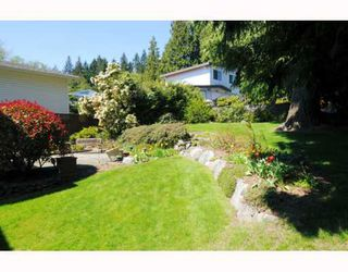 Photo 9: 531 CHAPMAN Avenue in Coquitlam: Coquitlam West House for sale : MLS®# V763347