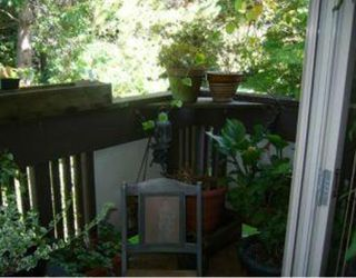 """Photo 9: 5 5575 OAK Street in Vancouver: Shaughnessy Condo for sale in """"SHAWNOAKS"""" (Vancouver West)  : MLS®# V772082"""