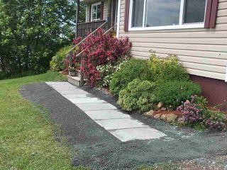 Photo 2: 61 Forge Street in Trenton: 107-Trenton,Westville,Pictou Residential for sale (Northern Region)  : MLS®# 202004189