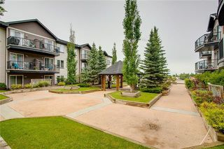 Photo 17: 417 1727 54 Street SE in Calgary: Penbrooke Meadows Apartment for sale : MLS®# C4290502
