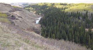 Photo 2: 163+/- Near Trochu: Rural Kneehill County Land for sale : MLS®# C4294134