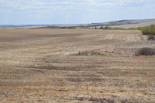 Photo 3: 163+/- Near Trochu: Rural Kneehill County Land for sale : MLS®# C4294134