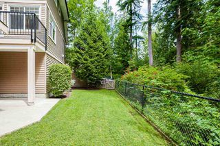"Photo 17: 59 11720 COTTONWOOD Drive in Maple Ridge: Cottonwood MR Townhouse for sale in ""COTTONWOOD GREEN"" : MLS®# R2468863"