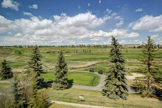 Photo 22: 32 COUNTRY HILLS Close NW in Calgary: Country Hills Detached for sale : MLS®# C4297950