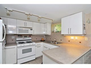 Photo 6: 3108 W 16TH Avenue in Vancouver: Arbutus House for sale (Vancouver West)  : MLS®# V884638