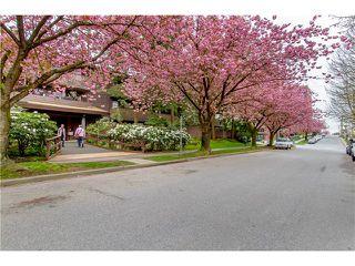 "Photo 11: 110 330 E 7TH Avenue in Vancouver: Mount Pleasant VE Condo for sale in ""LANDMARK BELVEDERE"" (Vancouver East)  : MLS®# V1059571"