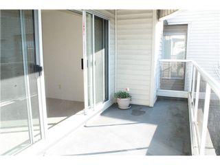 """Photo 13: 309 13771 72A Avenue in Surrey: East Newton Condo for sale in """"NEWTON PLAZA"""" : MLS®# F1432702"""
