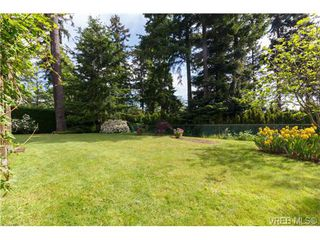 Photo 19: 2637 Tanner Rd in VICTORIA: CS Martindale House for sale (Central Saanich)  : MLS®# 701814