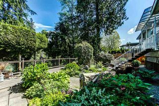 Photo 17: 20535 124A Avenue in Maple Ridge: Northwest Maple Ridge House for sale : MLS®# R2064433