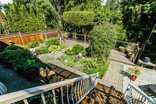 Photo 19: 20535 124A Avenue in Maple Ridge: Northwest Maple Ridge House for sale : MLS®# R2064433