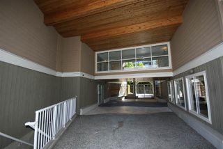 """Photo 14: 205 5880 DOVER Crescent in Richmond: Riverdale RI Condo for sale in """"WATERSIDE"""" : MLS®# R2068298"""