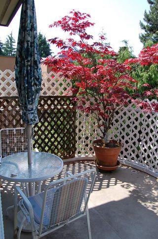 Photo 13: 1457 WALNUT Street: Kitsilano Home for sale ()  : MLS®# V770284