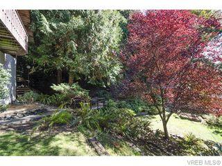 Photo 13: 2523 Brule Dr in SOOKE: Sk Sooke River House for sale (Sooke)  : MLS®# 744629