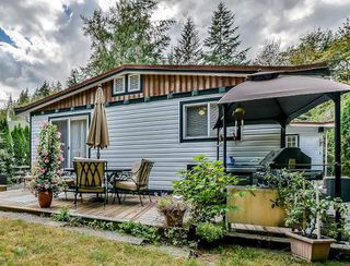 """Photo 17: 24013 FERN Crescent in Maple Ridge: Silver Valley House for sale in """"Golden Ears Park/Silver Valley"""" : MLS®# R2135287"""