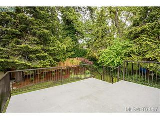 Photo 18: 3941 MARGOT Pl in VICTORIA: SE Maplewood Single Family Detached for sale (Saanich East)  : MLS®# 759177