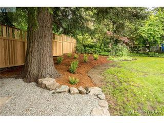Photo 20: 3941 MARGOT Pl in VICTORIA: SE Maplewood Single Family Detached for sale (Saanich East)  : MLS®# 759177