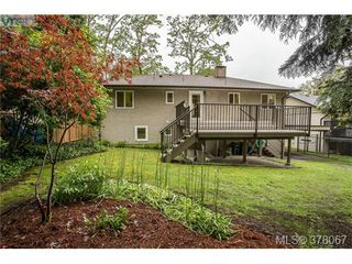 Photo 19: 3941 MARGOT Pl in VICTORIA: SE Maplewood Single Family Detached for sale (Saanich East)  : MLS®# 759177