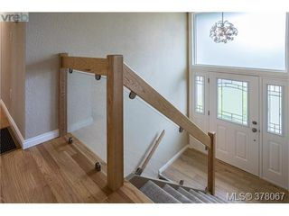 Photo 3: 3941 MARGOT Pl in VICTORIA: SE Maplewood Single Family Detached for sale (Saanich East)  : MLS®# 759177