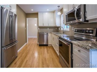 Photo 9: 3941 MARGOT Pl in VICTORIA: SE Maplewood Single Family Detached for sale (Saanich East)  : MLS®# 759177