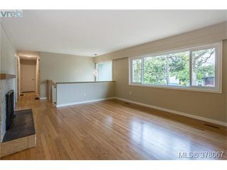 Photo 6: 3941 MARGOT Pl in VICTORIA: SE Maplewood Single Family Detached for sale (Saanich East)  : MLS®# 759177