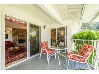 Photo 18: 12329 212 STREET in Maple Ridge: Northwest Maple Ridge House for sale : MLS®# R2186777