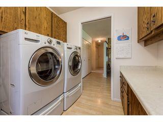 Photo 17: 12329 212 STREET in Maple Ridge: Northwest Maple Ridge House for sale : MLS®# R2186777