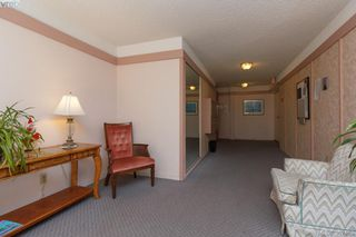 Photo 2: 204 1050 Park Boulevard in VICTORIA: Vi Fairfield West Condo Apartment for sale (Victoria)  : MLS®# 382455