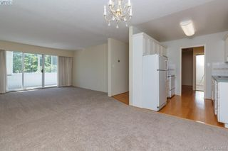 Photo 5: 204 1050 Park Boulevard in VICTORIA: Vi Fairfield West Condo Apartment for sale (Victoria)  : MLS®# 382455