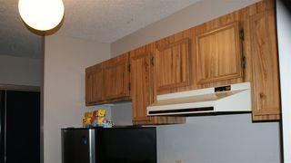 Photo 12: 307 10555 93 Street in Edmonton: Zone 13 Condo for sale : MLS®# E4087120