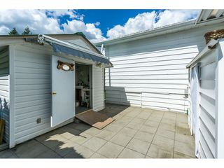 "Photo 19: 178 3665 244 Street in Langley: Otter District Manufactured Home for sale in ""LANGLEY GROVE ESTATES"" : MLS®# R2272680"