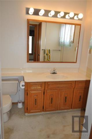 Photo 11: 47 Dunham Street in Winnipeg: Residential for sale (4H)  : MLS®# 1824007