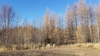 Photo 12: #3-51227 RGE RD 270 Road: Rural Parkland County Rural Land/Vacant Lot for sale : MLS®# E4133466