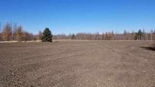 Photo 8: #3-51227 RGE RD 270 Road: Rural Parkland County Rural Land/Vacant Lot for sale : MLS®# E4133466